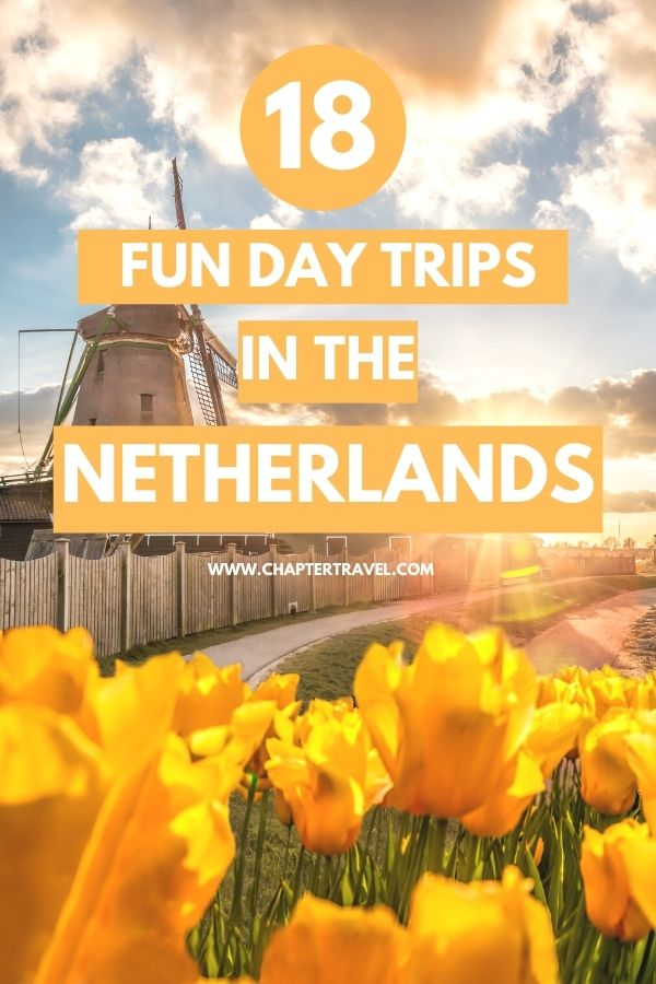Are you looking for fun day trips in The Netherlands? Then you came to the right place! Check out these amazing day trips, including lots of day trips from Amsterdam!